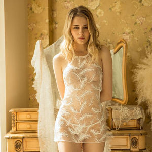 Manufacturers wholesale sexy feather embroidery transparent lace hanging neck back bodysuit lingerie